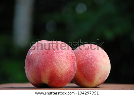 Drops of moisture fall along the largest of the two peaches. - stock photo