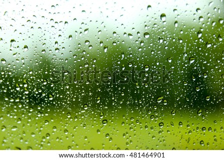 Drops of rain on glass with green tree nature background.