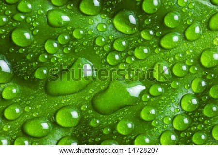 Drops on sheet - stock photo
