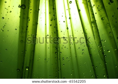 Drops with  green background - stock photo