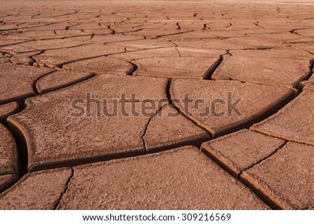 drought land & cracked land - stock photo