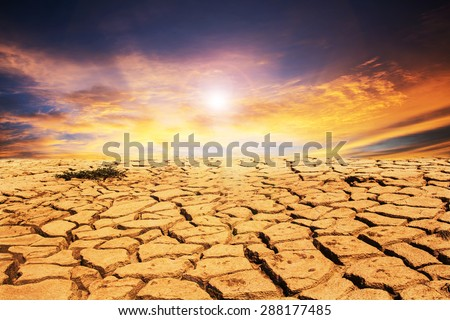 drought land under the sun - stock photo