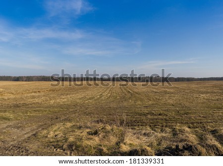 drought on the field in the central Europe, Poland - stock photo