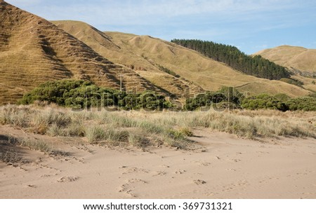drought stricken denuded coastal hills cleared for sheep and cattle farming, Makorori Beach, Gisborne, New Zealand