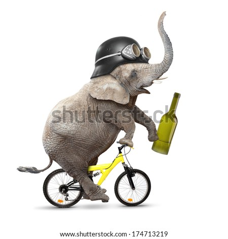 Drunken driver riding a bike. Traffic safety and insurance concept.  - stock photo
