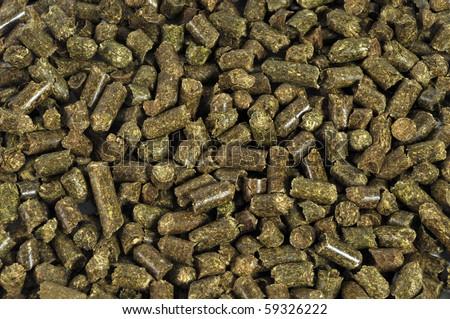Dry Alfalfa animals food - stock photo