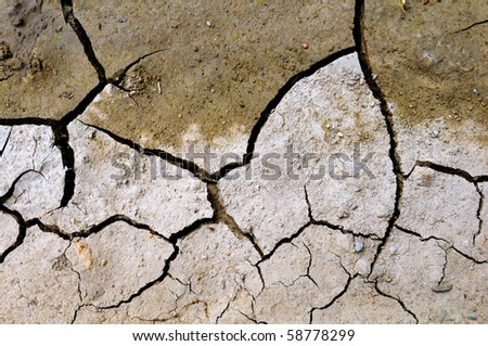 Dry and cracked ground in summer