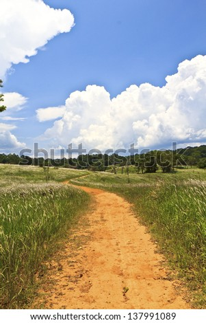 Dry and hot road into the field at the mountain. - stock photo