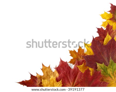 dry autumnal leaves corner with copy space