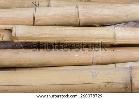 Dry bamboo texture - stock photo