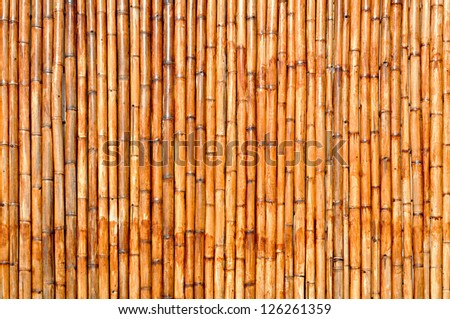 Dry bamboo wall background