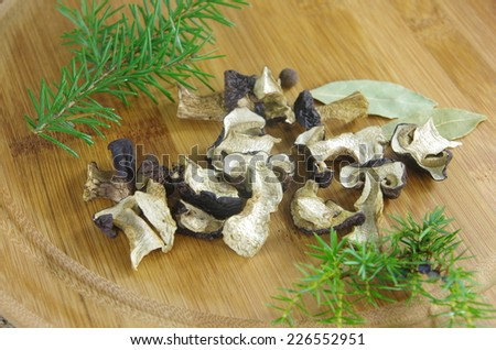 dry boletus on wooden plank - stock photo