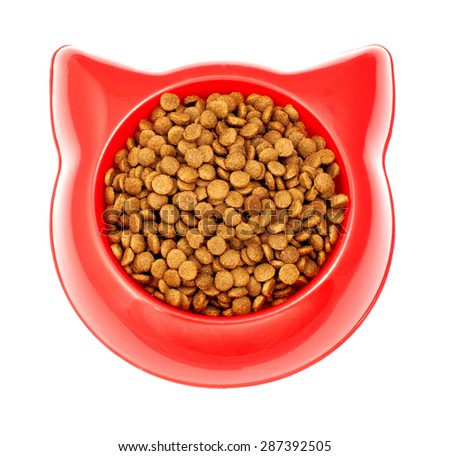Dry brown pet food for cat in the red plastic bowl - stock photo