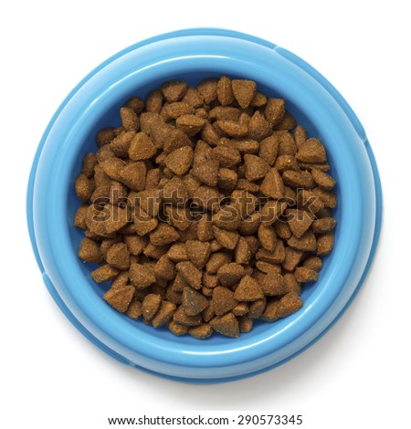 Dry cat food in blue bowl isolated on white from above. - stock photo