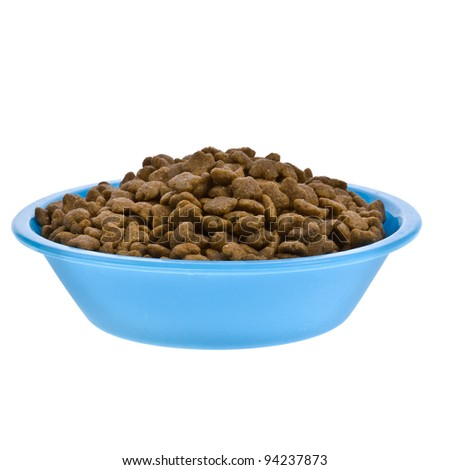 Dry cat food in plastic bowl isolated on white