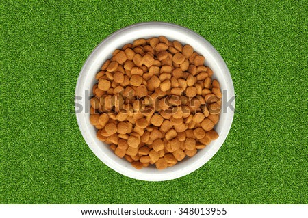 Dry cat food in plate over green grass - stock photo