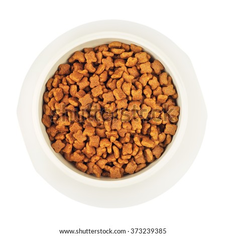 Dry Cat Food In White Bowl - stock photo