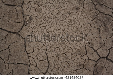 Dry chapped land, marshy ground, warm climate. - stock photo