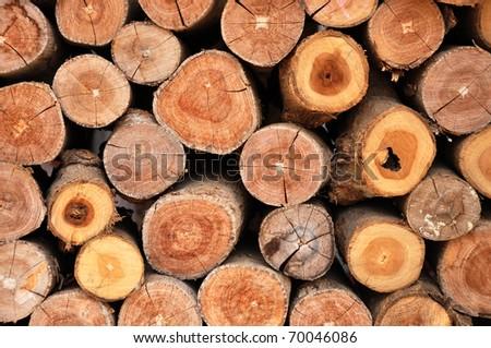 Dry chopped firewood logs - stock photo