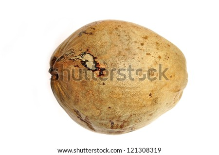 dry coconut fruit isolated on white background