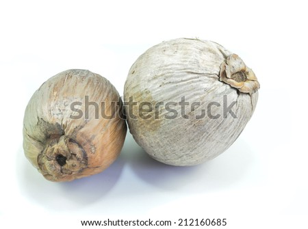 dry coconut  on  white background - stock photo