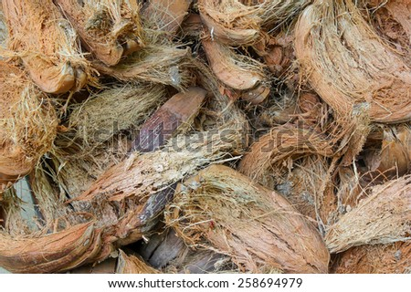 dry coconut shell background - stock photo