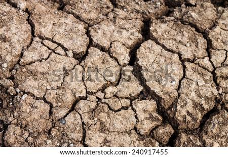 Dry crack ground.  - stock photo