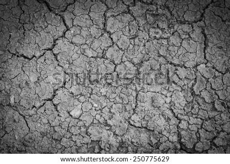 Dry crack soil on dry season, Global worming effect. - stock photo