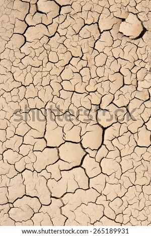 Dry, cracked dirt from an arid land as background or texture for creative design - stock photo