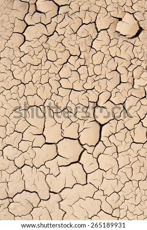 Dry, cracked dirt texture - stock photo