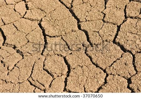 dry, cracked earth - stock photo