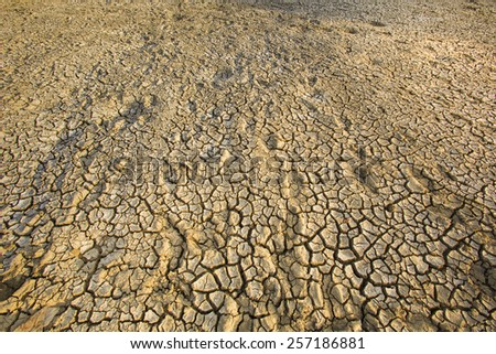 dry cracked earth background - stock photo