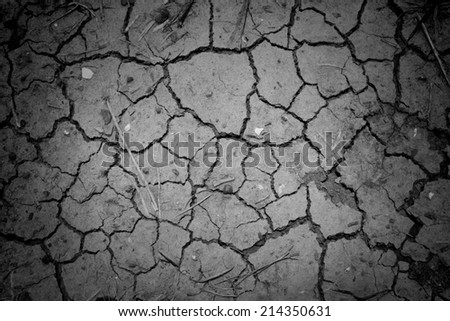 dry cracked earth for black and white texture background - stock photo