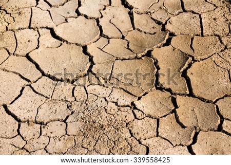Dry cracked earth texture background,Desert - stock photo