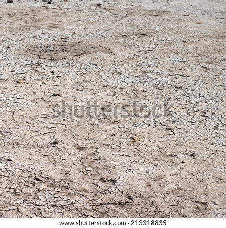 Dry cracked ground after a lake draining  - stock photo