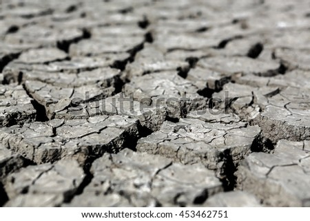 Dry cracked muddy earth in summer drought on baron wastelands of lake