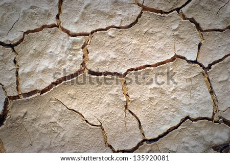 dry desert cracked and barren ground soil as background