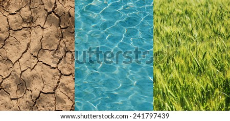 Dry field, green wheat and water in one image - stock photo