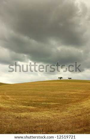 Dry field in alentejo with trees. - stock photo