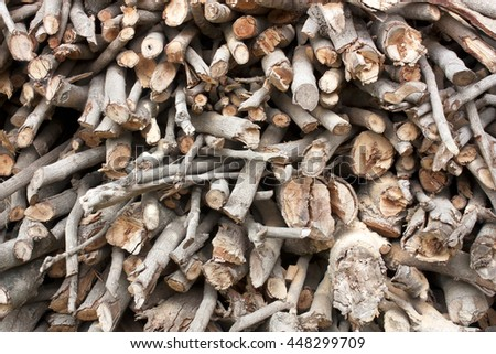 Dry firewood as fuel wood from fallen trees to make firewood, wood from fruit trees. Longan longan wood or wood that are hard to use because it is very flammable, very good coals from burning wood. - stock photo