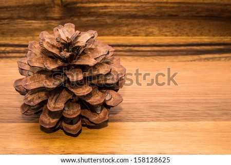 dry flower on wood backgrounds