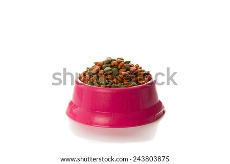 dry food for dogs in bowl  on white background - stock photo