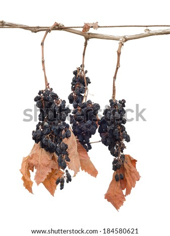 dry grapes with leaves isolated on white background - stock photo