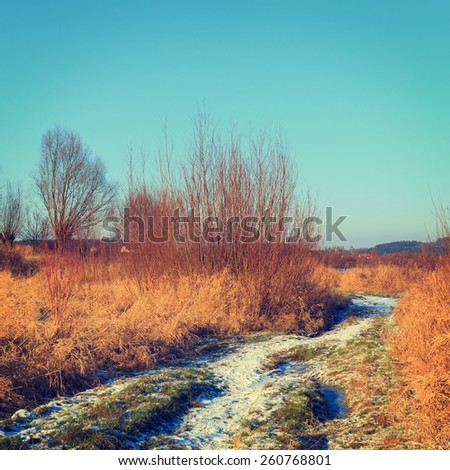 dry grass field, vintage color tone - stock photo
