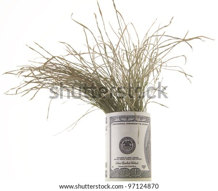 dry grass growing in a pot made ??of dollar bills - stock photo