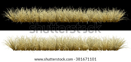 Dry grass on an isolated background - stock photo