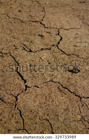 Textured background dry cracked brown earth stock photo 33446812 dry ground land area sciox Images