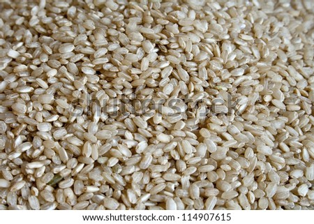 Dry integral rice as background - stock photo