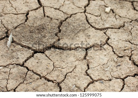 Dry land - stock photo