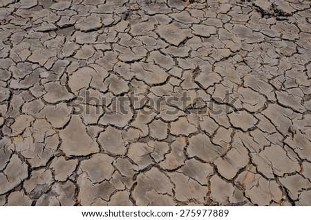 Dry Land  - stock photo